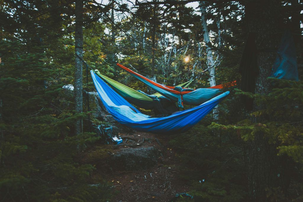 Hammock camping in the forest (Types of Camping)