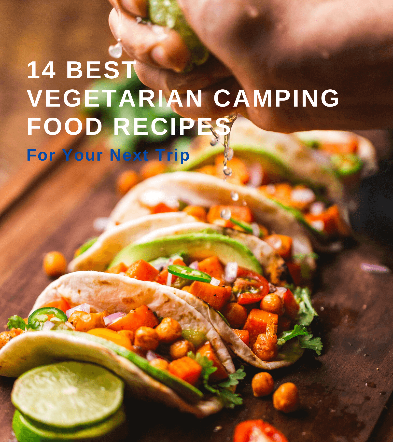 14 Best Vegetarian Camping Food Recipes For Your Next Trip