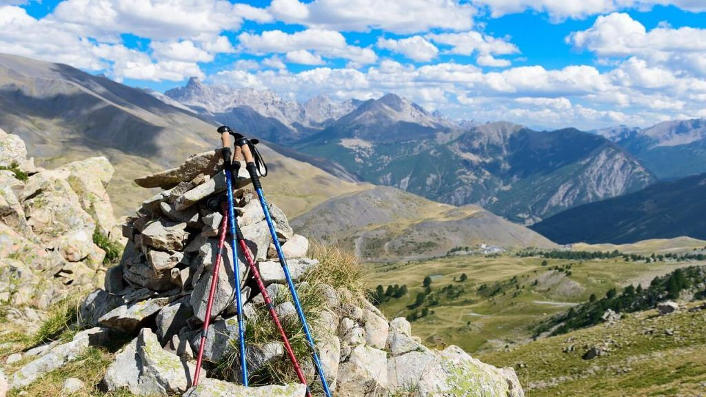 gift ideas for hikers-hiking poles