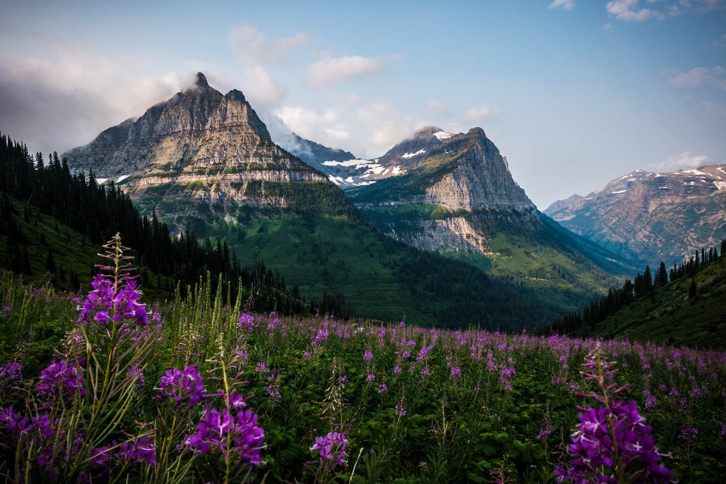 Camping in Glacier National Park: 15 Greatest Campgrounds