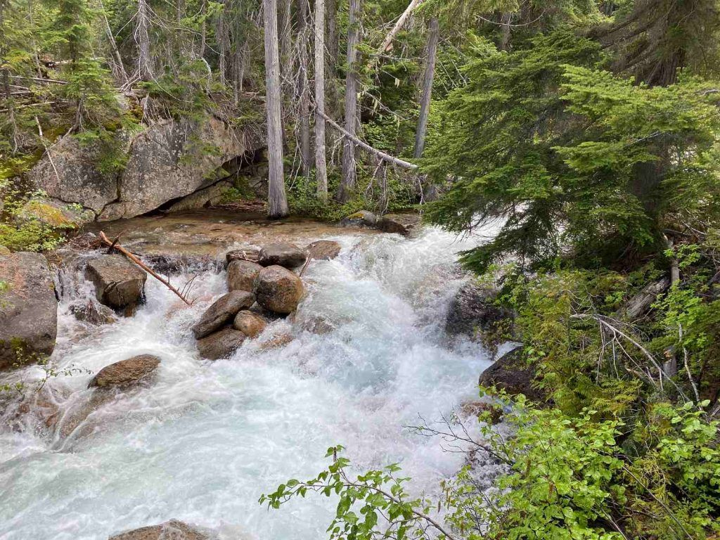 camping in north cascades national park-lone fir campground, trails near