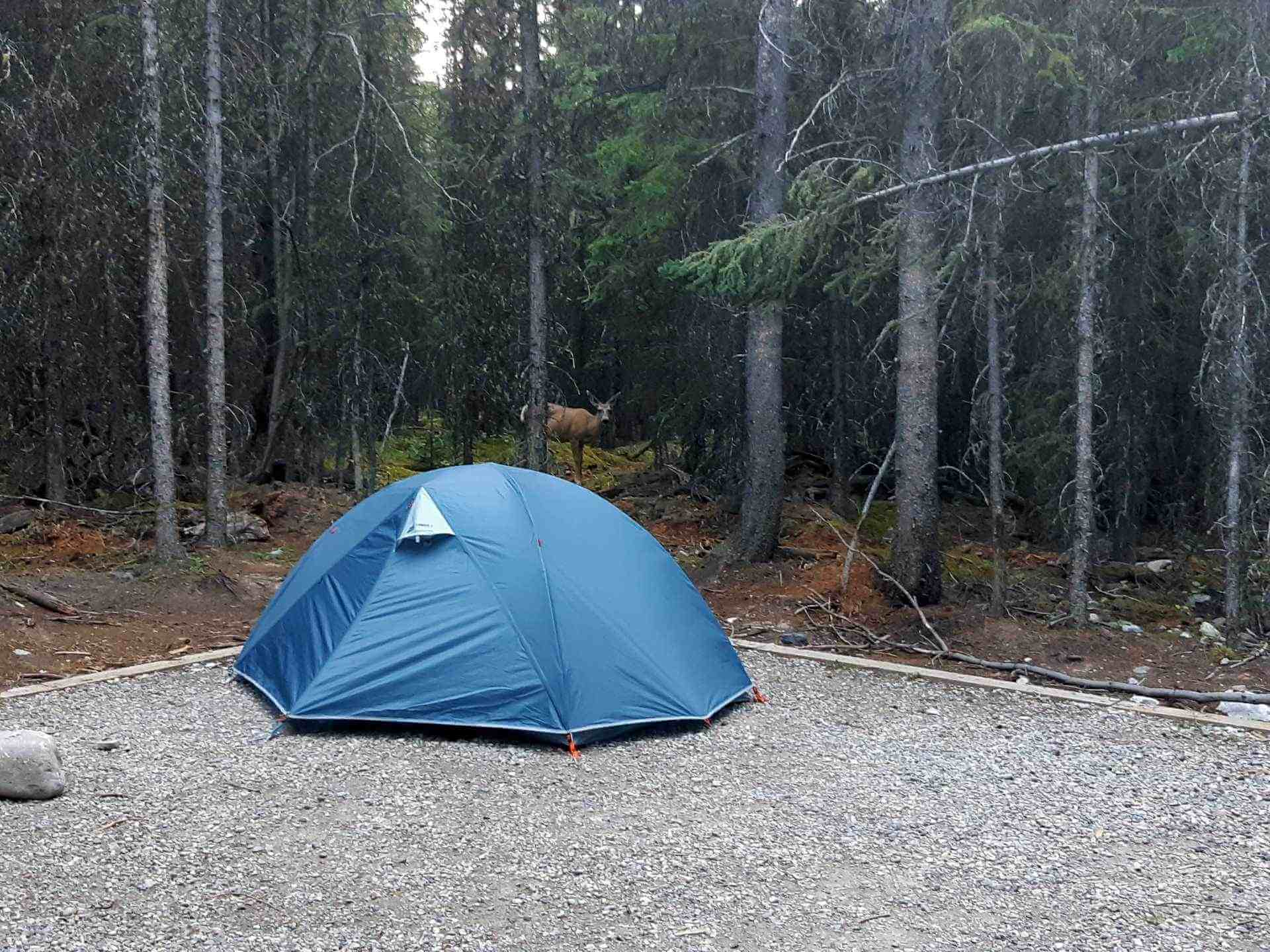 MEC Camper 2: One Tent for Backpacking and Car Camping?