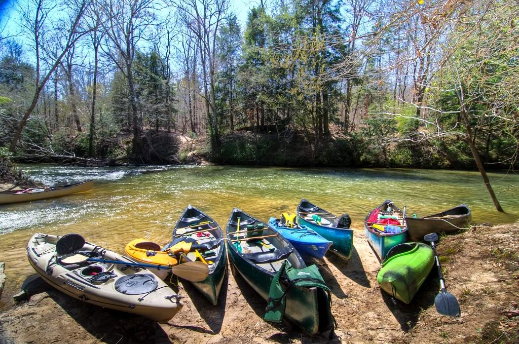 camping in alabama: Bankhead National Forest