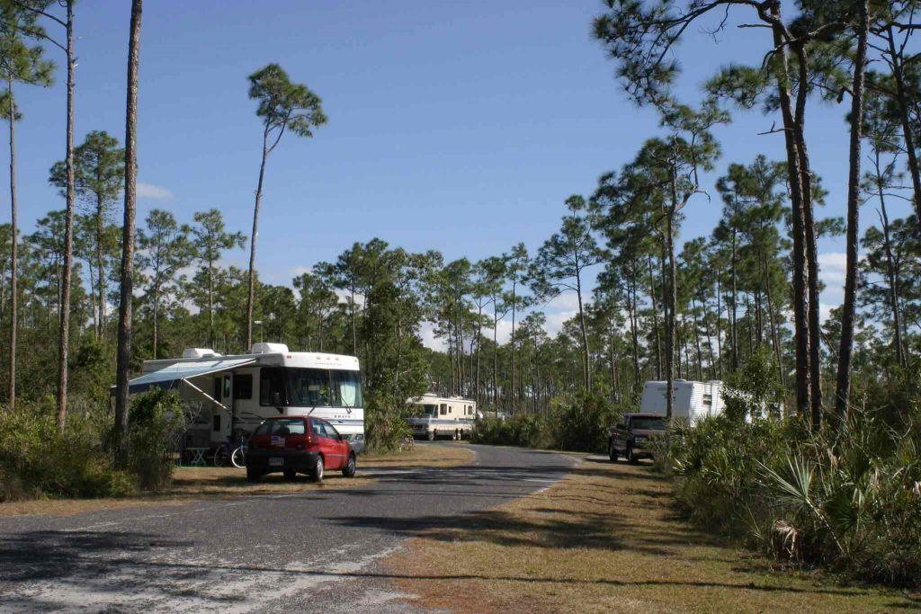 Long Pine Key Campground - rv camping around everglades national park