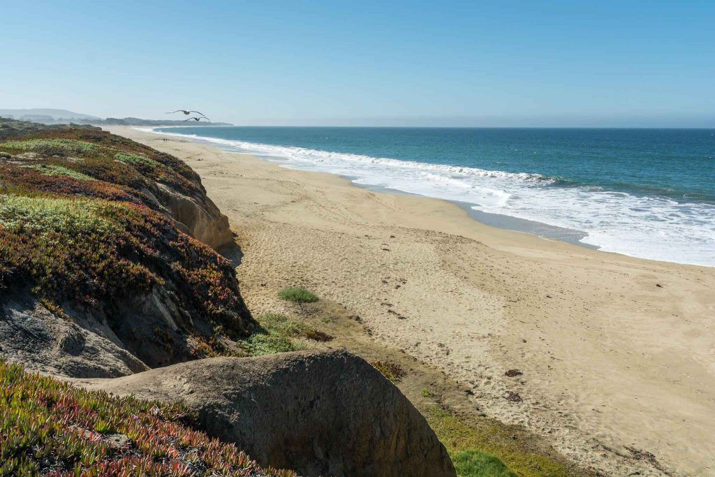 Best RV camping in Half Moon Bay - Half Moon Bay State Beach Campground
